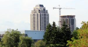 Neighbourhood Profile: Mount Joy